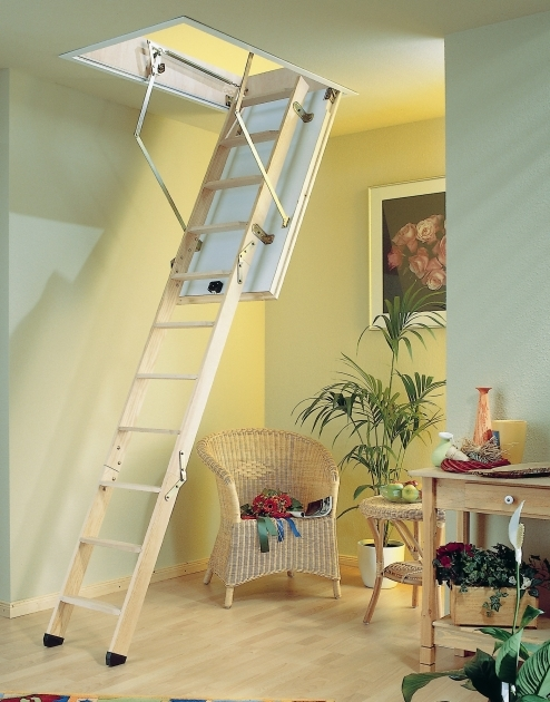 Pull Down Pole For Attic Stairs Furniture Animal Planet Wooden Pet Stairs Image 71