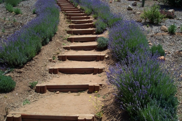 Building Stairs Into A Hill How To Calculate Vertical Hillside Rise Picture 23