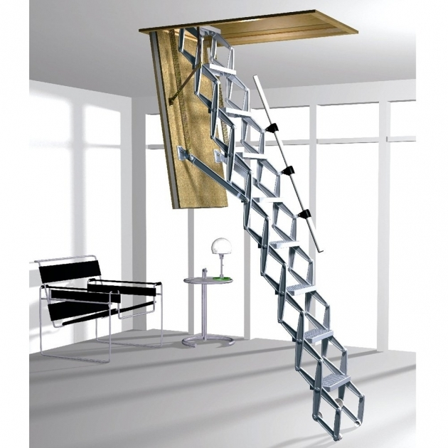 Attic Pulldown Stairs Access Ladder 6 Roof Access Images 27