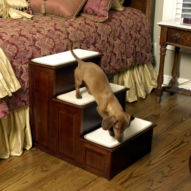 Dog Stairs For Bed Modern Ideas Image 38