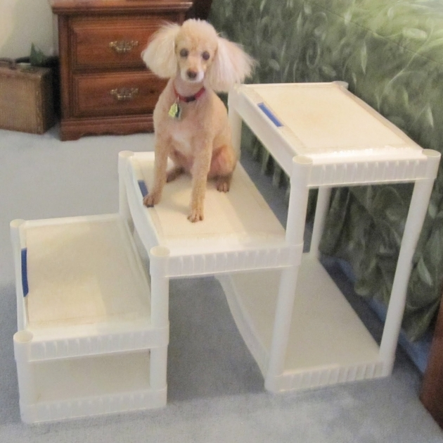 Dog Steps And Insulation Dog Stairs For Bed Photos 99