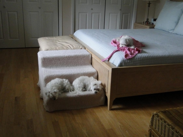 Modern Dog Stairs For Bed Photos 83