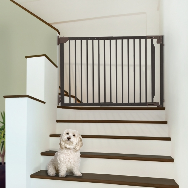Pet Gates For Stairs Expandable Walk Thru Pet Gate Richell Usa Inc Photos 32