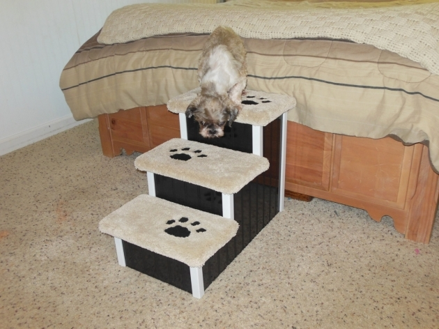 Pet Stairs For Bed Best Collections Photo 77