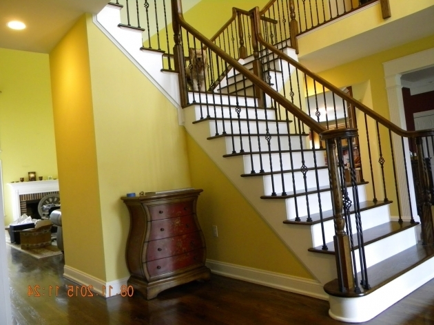 Iron Balusters Stairs Interior Railings Ornamental  Photos 11