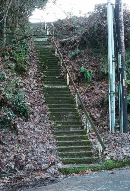 Building Stairs Into A Hill Schemata Capitol Hill's Modernist Enclave Pictures 29