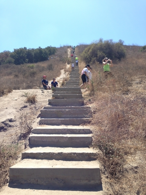 Culver City Stairs How Many Steps Photo 44