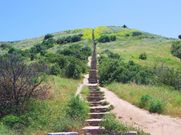 Culver City Stairs Images Baldwin Hills Scenic Overlook Pictures 85