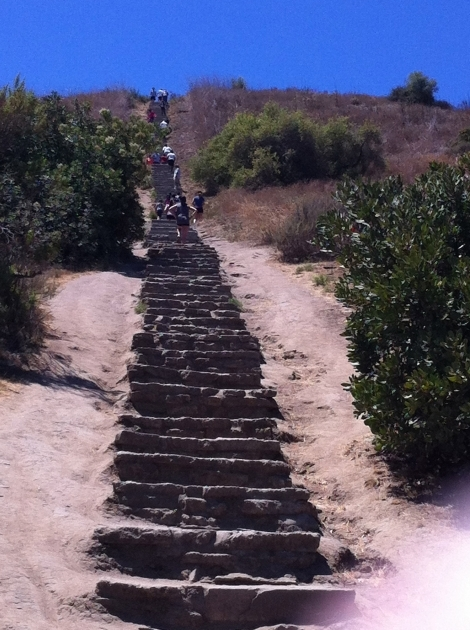Culver City Stairs Top Throwing Down The Gauntlet On La's Toughest Physical Challenge Picture 58