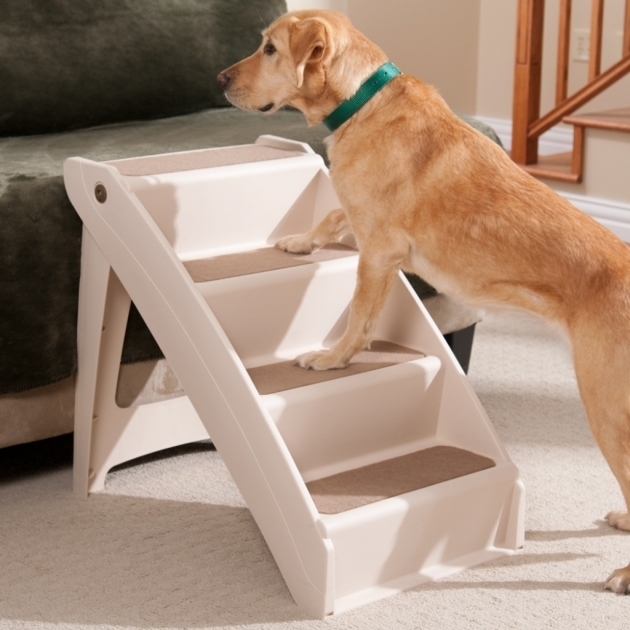 Pet Stairs For Bed Indoor Dog Stairs Beds Photos 40