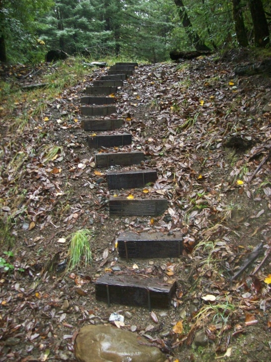Hillside Stair Ideas More Backyard Stairs | Garden Stairs, Landscape Stairs Picture 351